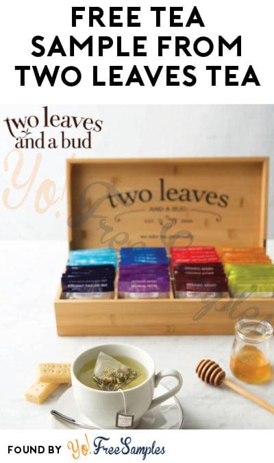 FREE Tea Sample from Two Leaves Tea