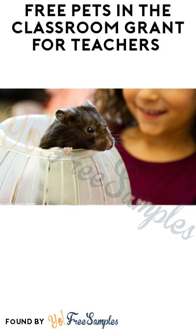 FREE Pets in The Classroom Grant for Teachers (Must Apply)